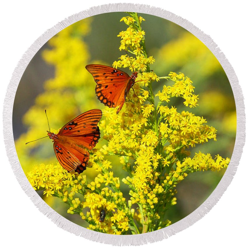 Gulf Fritilary Butterfly Round Beach Towel featuring the photograph Gulf Fritilaries On Golden Rod by Barbara Bowen