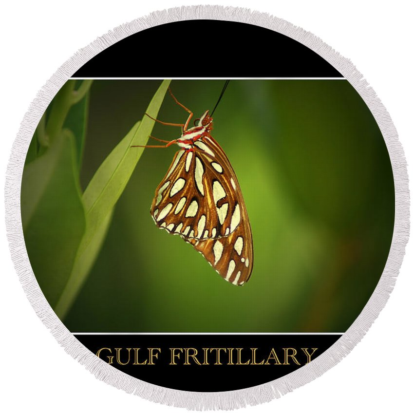 Gulf Fritillary Round Beach Towel featuring the photograph Gulf Fritillary 2 by David Weeks