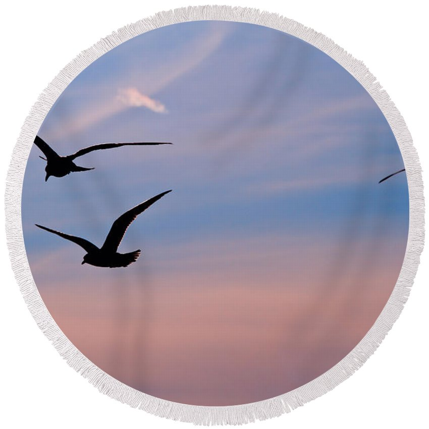 Seagulls Round Beach Towel featuring the photograph Gulls At Dusk by Karol Livote