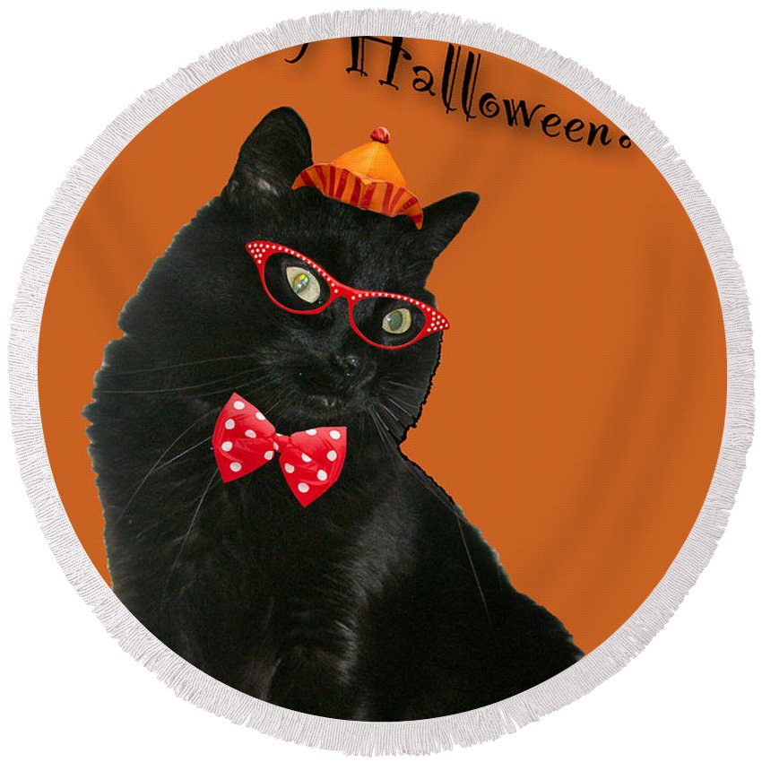 Halloween Round Beach Towel featuring the photograph Halloween Card - Black Cat Ready To Party by Mother Nature