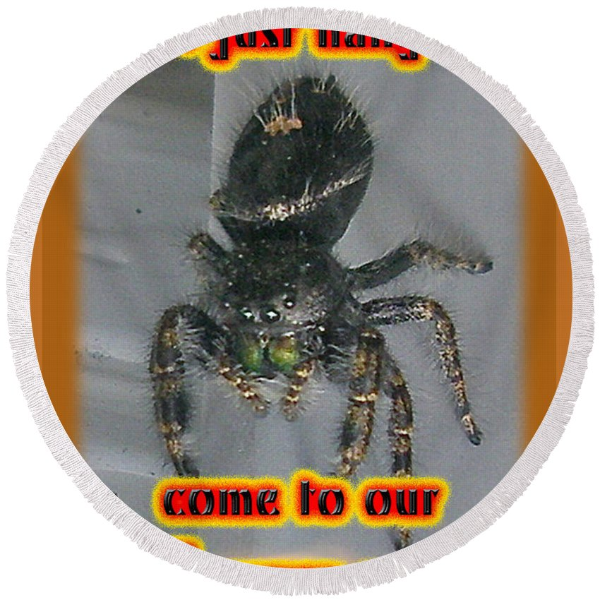 Halloween Round Beach Towel featuring the photograph Halloween Party Invitation - Salticid Jumping Spider by Mother Nature