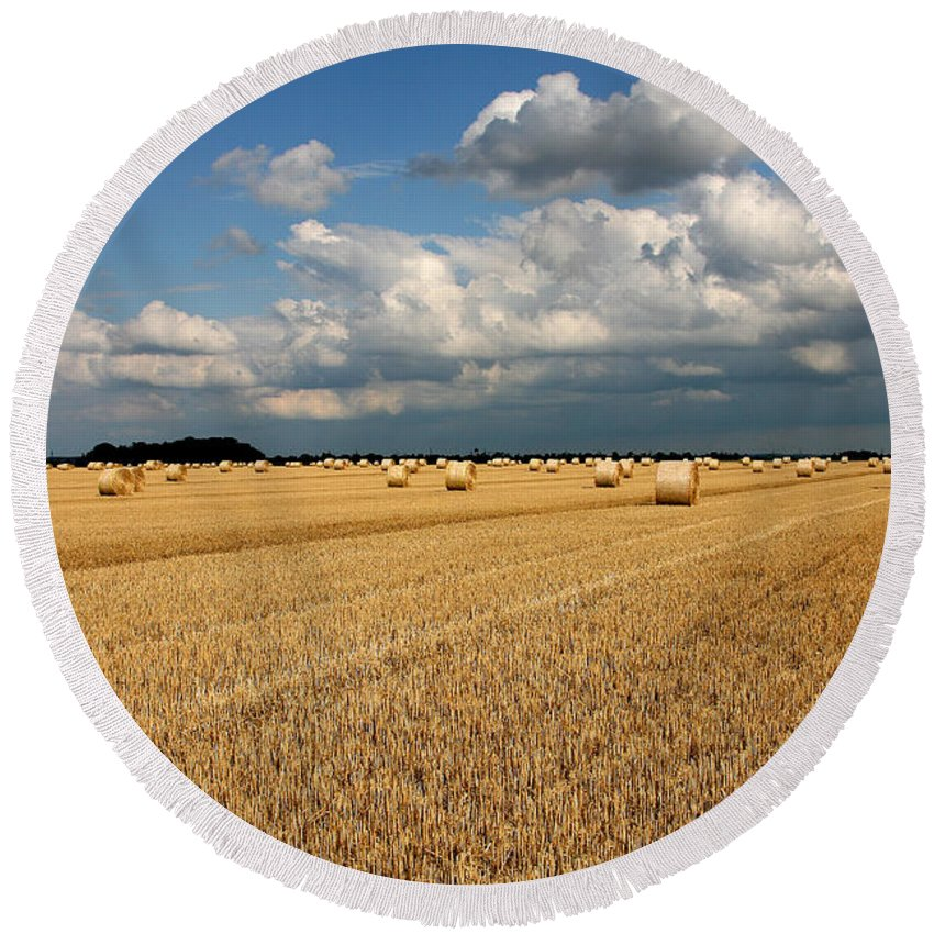 Harvest Round Beach Towel featuring the photograph Harvest by Ralf Kaiser