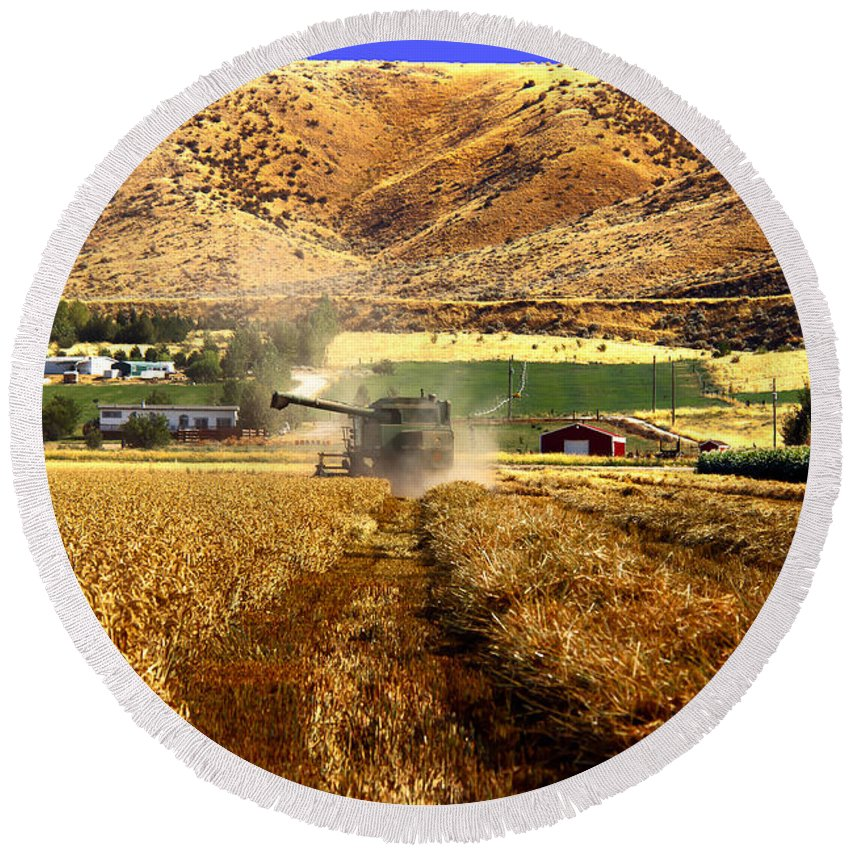 Wheat Round Beach Towel featuring the photograph Harvest Time by Robert Bales