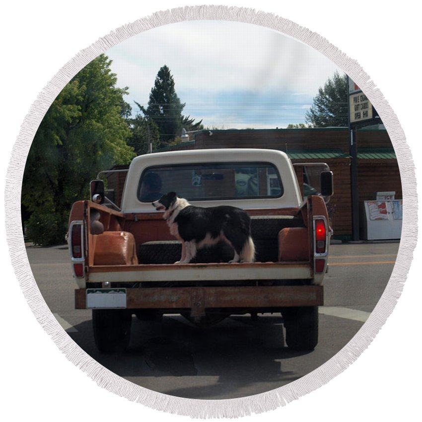 Dog Round Beach Towel featuring the photograph Headed Home by Joshua House