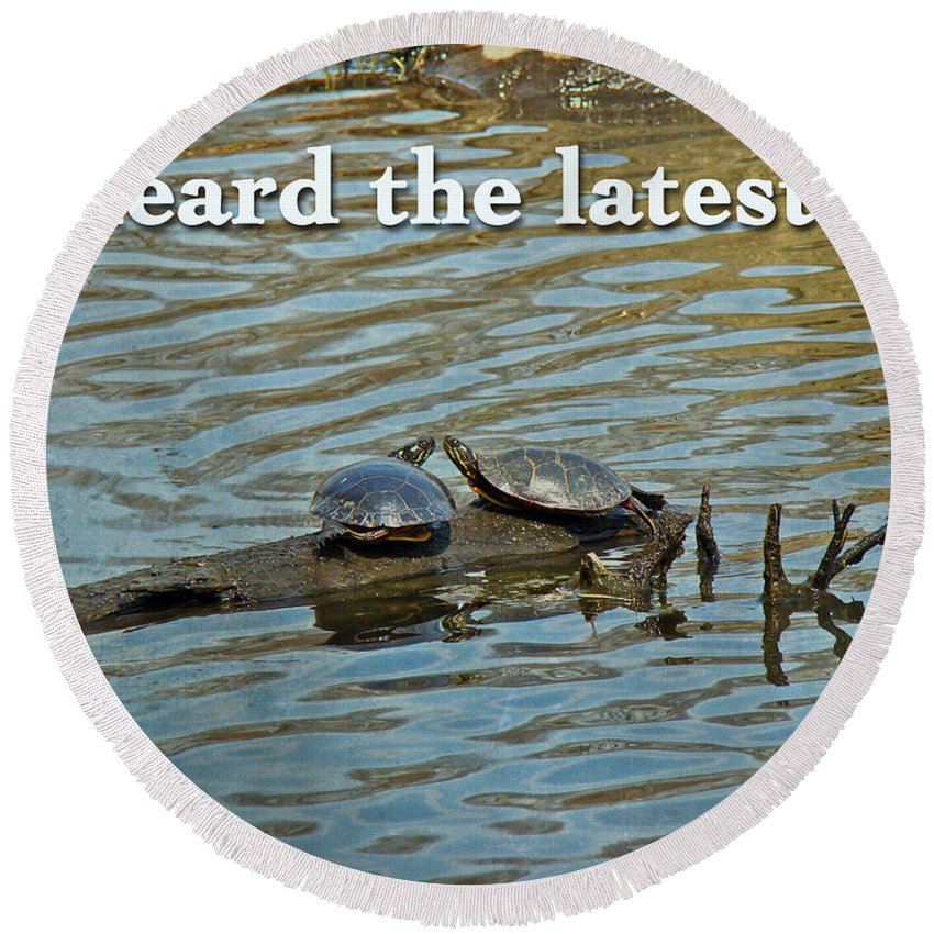 Heard The Latest Round Beach Towel featuring the photograph Heard The Latest Hello Hi Greeting Card - Painted Turtles by Mother Nature