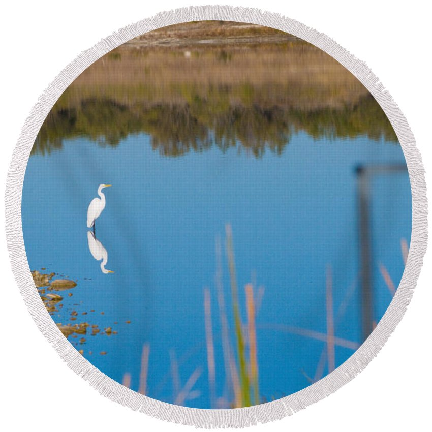 Fall Color Round Beach Towel featuring the photograph Herron 1 by Sean Wray