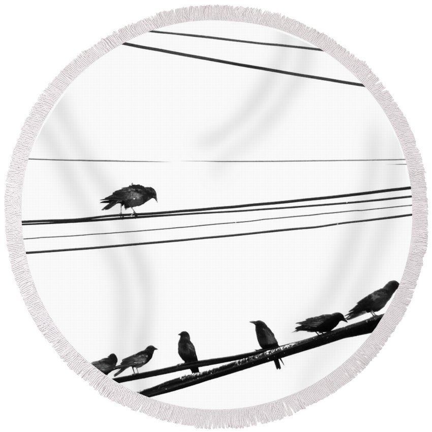 Crows Round Beach Towel featuring the photograph Higher Seven by The Artist Project