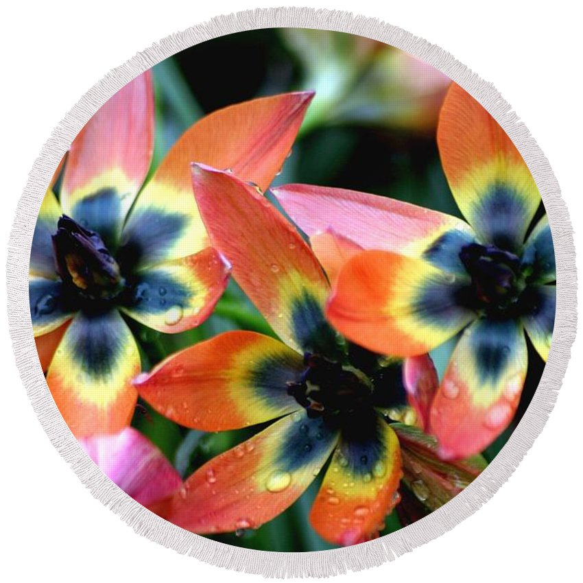 Floral Round Beach Towel featuring the photograph Hippie Tulips by Living Color Photography Lorraine Lynch