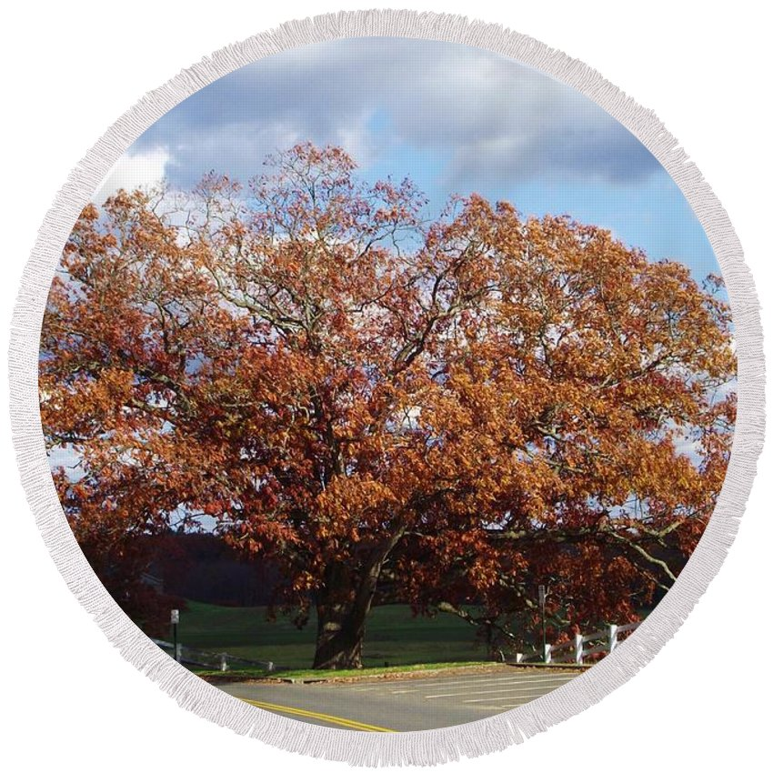 Giant Oak Tree Round Beach Towel featuring the photograph Horse Barn Hill In Autumn by Michelle Welles