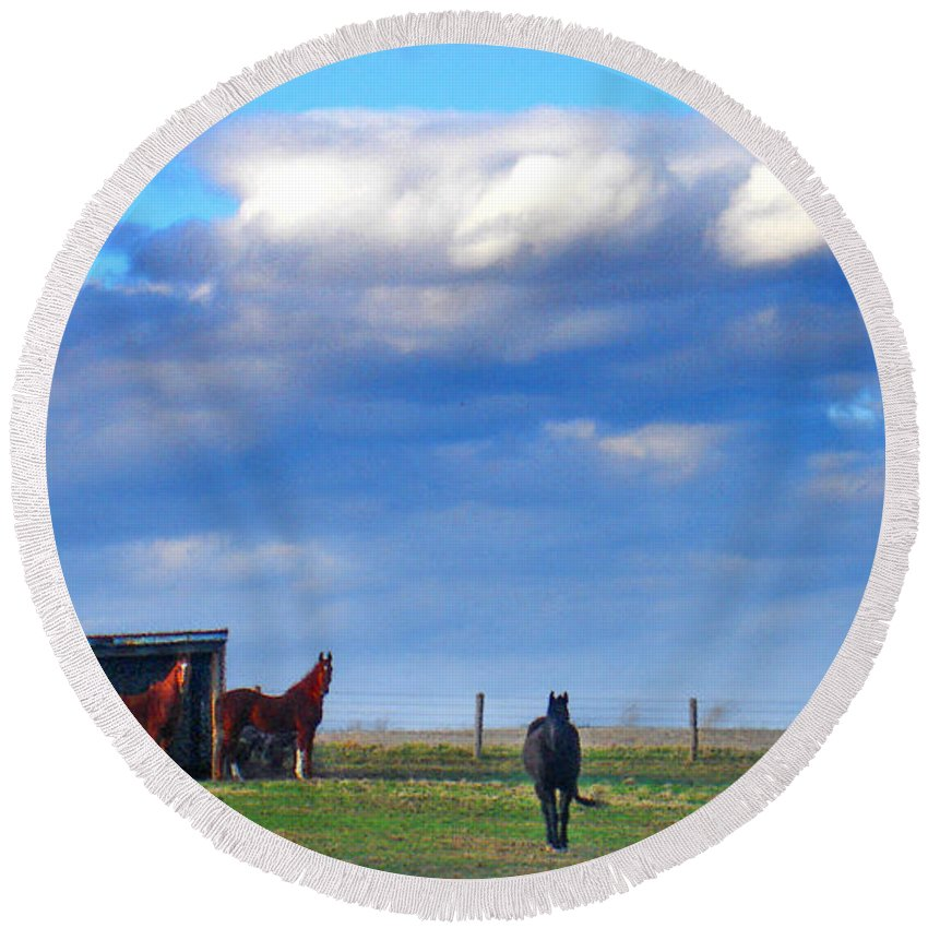 Landscape Round Beach Towel featuring the photograph Horse Ranch Landscape by Steve Karol