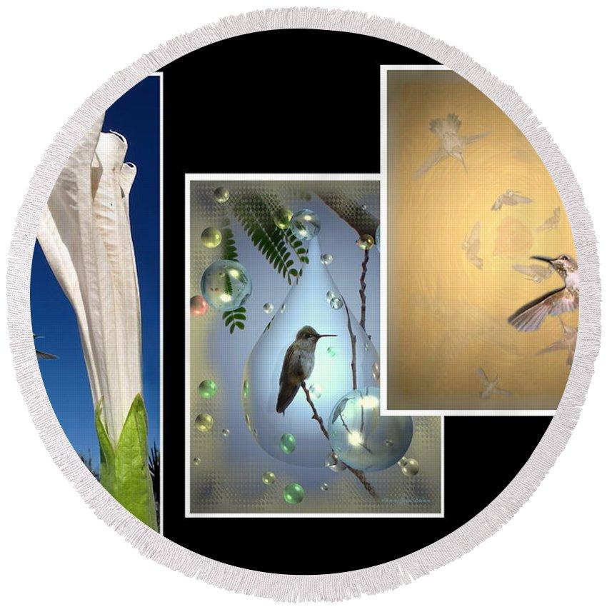 Bird Round Beach Towel featuring the photograph Hummingbird Collage 2009 by Joyce Dickens
