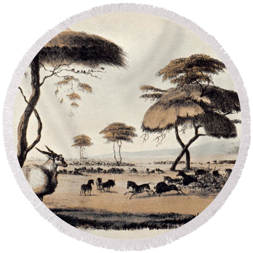 1841 Round Beach Towel featuring the photograph Hunting At Meritsane, by Granger