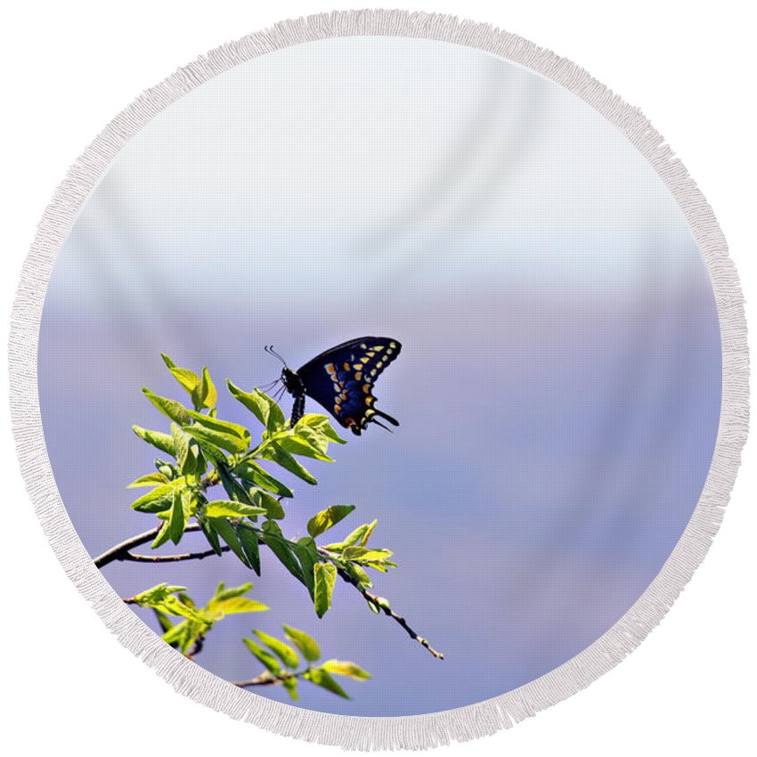 Butterfly Round Beach Towel featuring the photograph I Fly High by Douglas Barnard