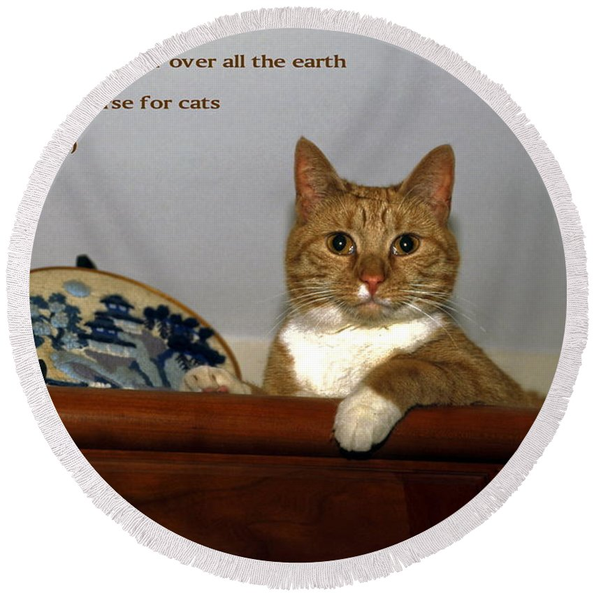 Orange Tabby Cat Lying On Top Of Cabinet Round Beach Towel featuring the photograph I Shall Make You Ruler by Sally Weigand