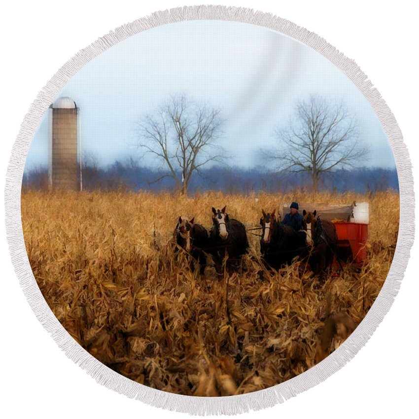 Amish Round Beach Towel featuring the photograph In The Corn 1 by David Arment