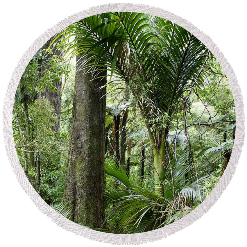 Trees Round Beach Towel featuring the photograph Jungle by Les Cunliffe