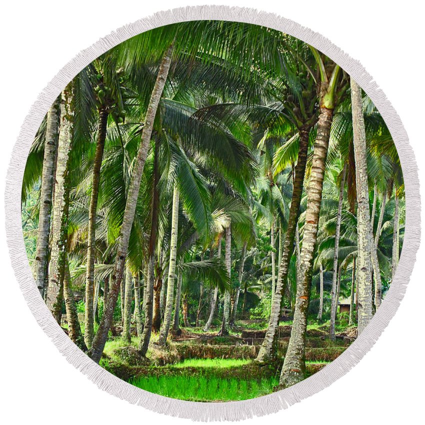 Asia Round Beach Towel featuring the photograph Kabune by Mark Sellers