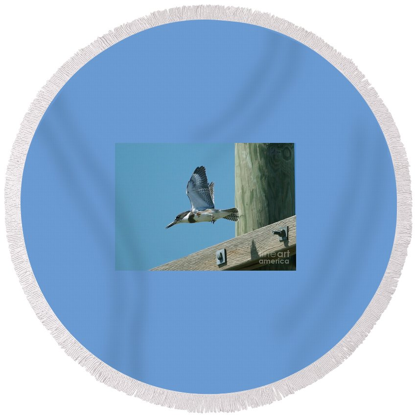 Birds Round Beach Towel featuring the photograph Kingfisher by Lori Tordsen