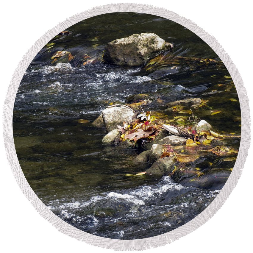 Stream Round Beach Towel featuring the photograph Leaf Collection by Darleen Stry