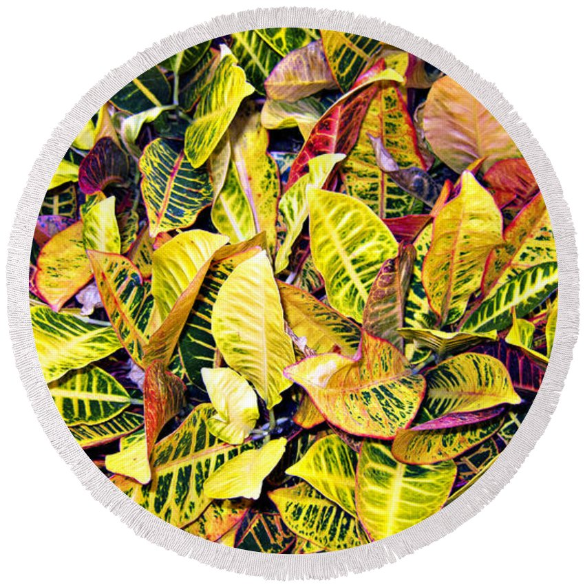 Yellow And Green Leaves Round Beach Towel featuring the photograph Leave Carpet by Douglas Barnard