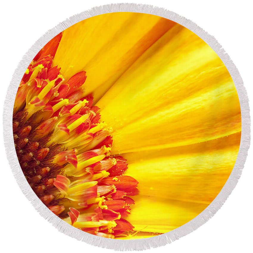 Yellow Round Beach Towel featuring the photograph Little Bit Of Sunshine by Eunice Gibb