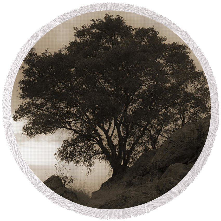 Lone Round Beach Towel featuring the photograph Lone Oak 2 Sepia by Jim And Emily Bush