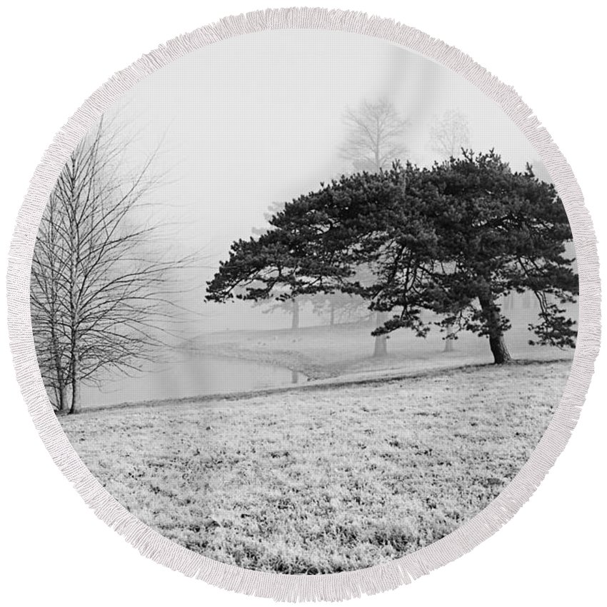 Tree Round Beach Towel featuring the photograph Lone Pine Frost And Fog In Carondelet Park by Greg Matchick