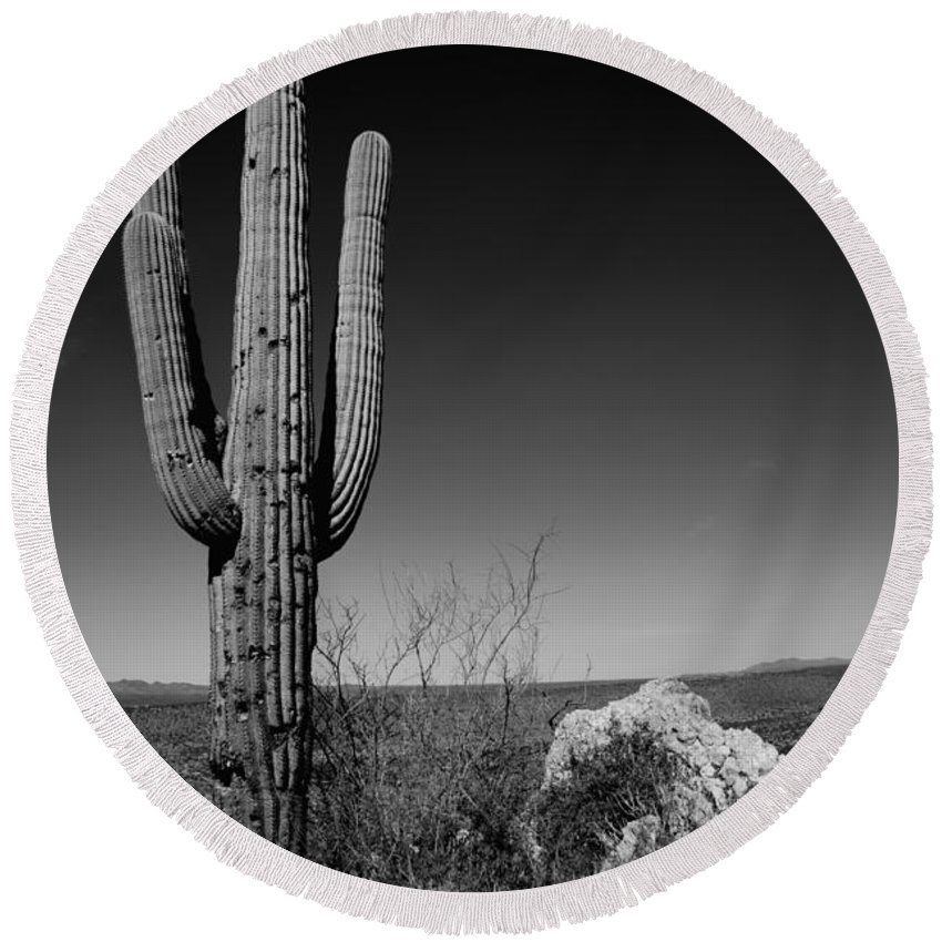 Lone Saguaro Round Beach Towel featuring the photograph Lone Saguaro by Chad Dutson