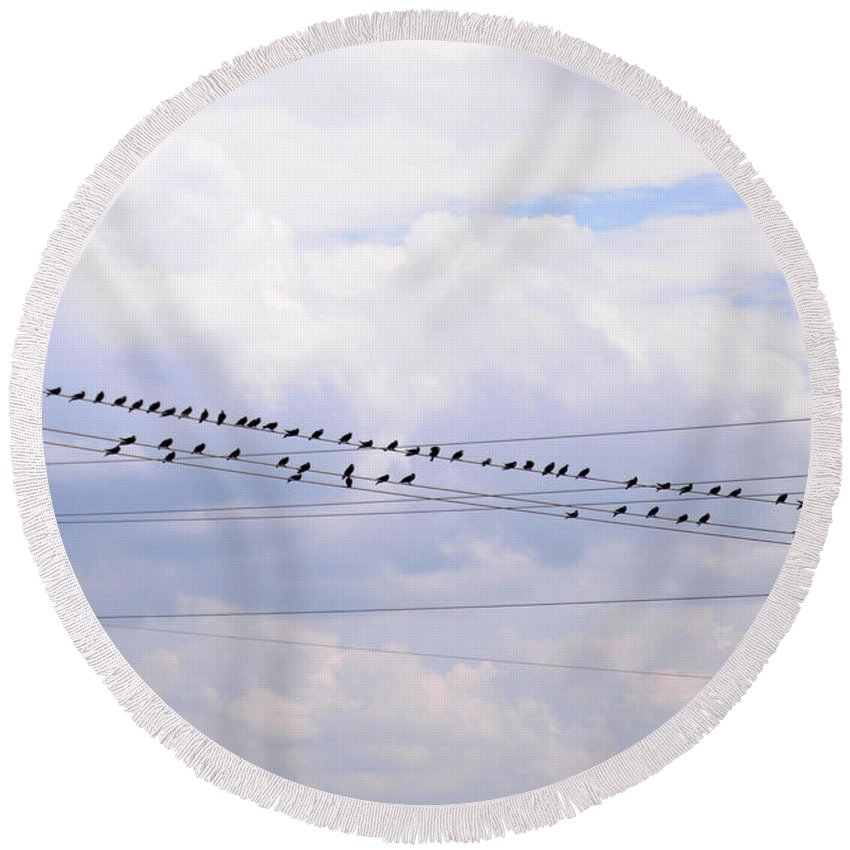 Interior Design Round Beach Towel featuring the photograph Lots Of Birds On Wires by Paulette B Wright