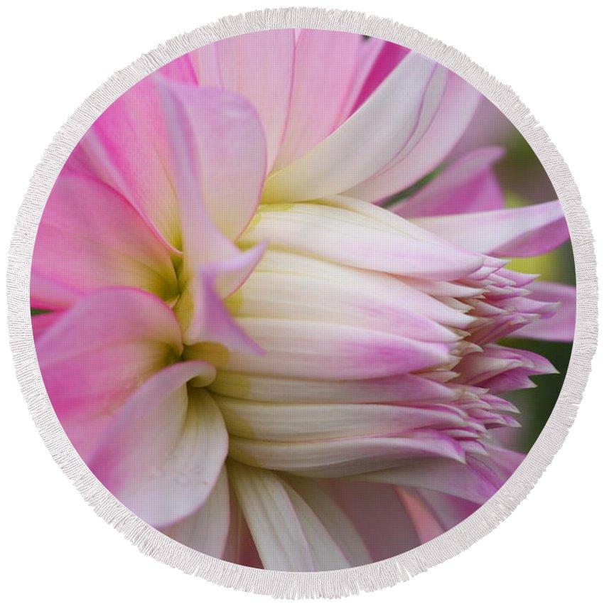 Macro Flower Print Round Beach Towel featuring the photograph Macro Flower Profile by Marie Jamieson
