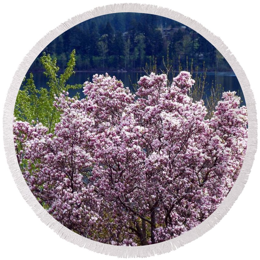 Magnolia Tree Round Beach Towel featuring the photograph Magnolia By The Lake by Will Borden