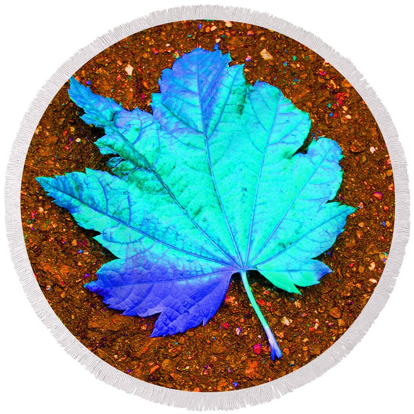 Macro Maple Leaf Print Round Beach Towel featuring the photograph Maple Leaf On Pavement by Marie Jamieson