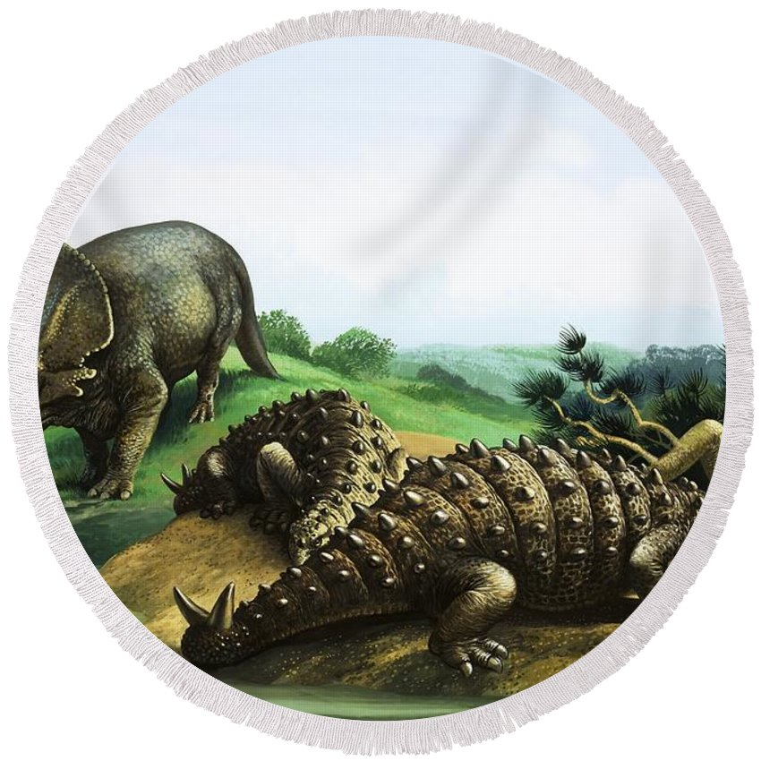 Monoclonius; Scolosaurus; Dinosaur; Pre-historic Animals; Prehistoric Animals; Dinosaurs Round Beach Towel featuring the painting Monoclonius And Scolosaurus by English School