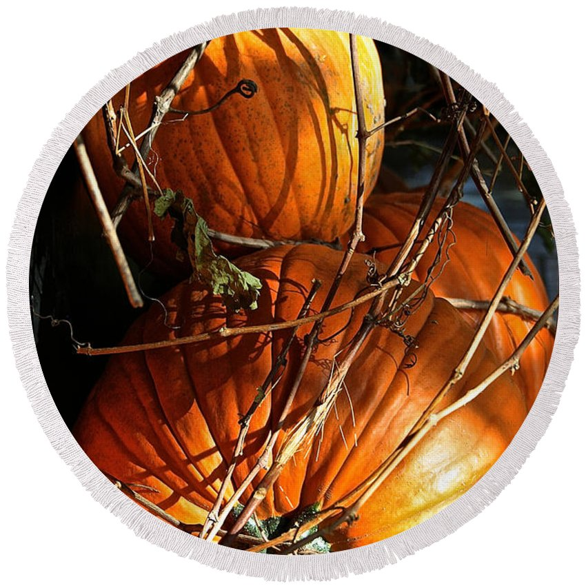 Outdoors Round Beach Towel featuring the photograph Morning Pumpkins by Susan Herber
