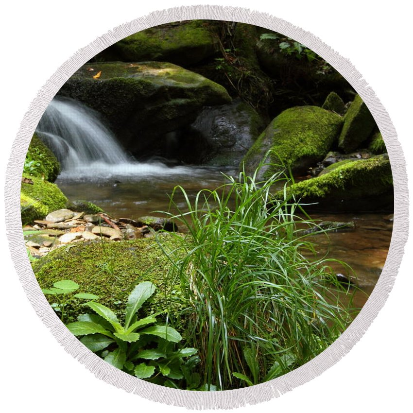 Tennessee Round Beach Towel featuring the photograph Moss And Water And Ambience by Andrew McInnes