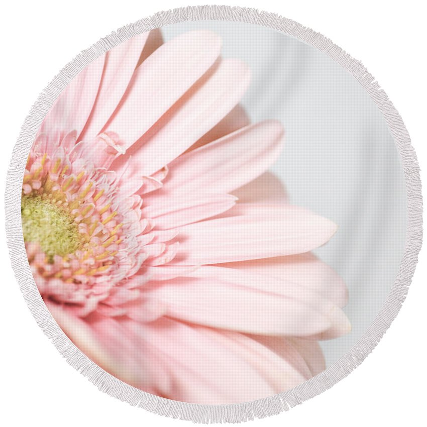Gerber Daisy Round Beach Towel featuring the photograph My Heart Opens For You by Traci Cottingham