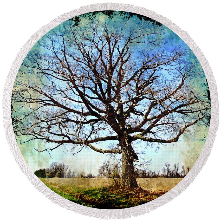 Nature Round Beach Towel featuring the digital art Old Oak Tree by Debbie Portwood