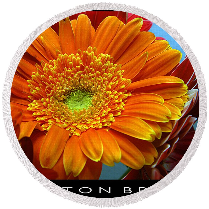 Clay Round Beach Towel featuring the photograph Orange Floral by Clayton Bruster
