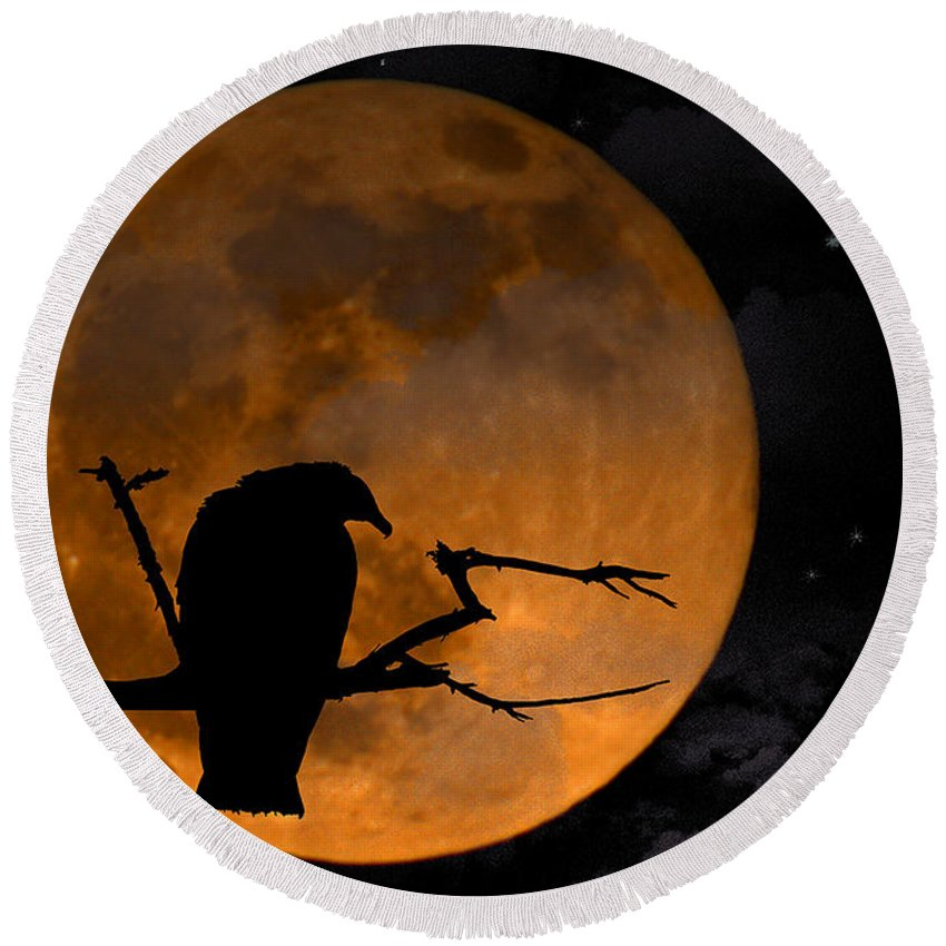 Full Moon Round Beach Towel featuring the photograph Out On A Limb by Ken Frischkorn