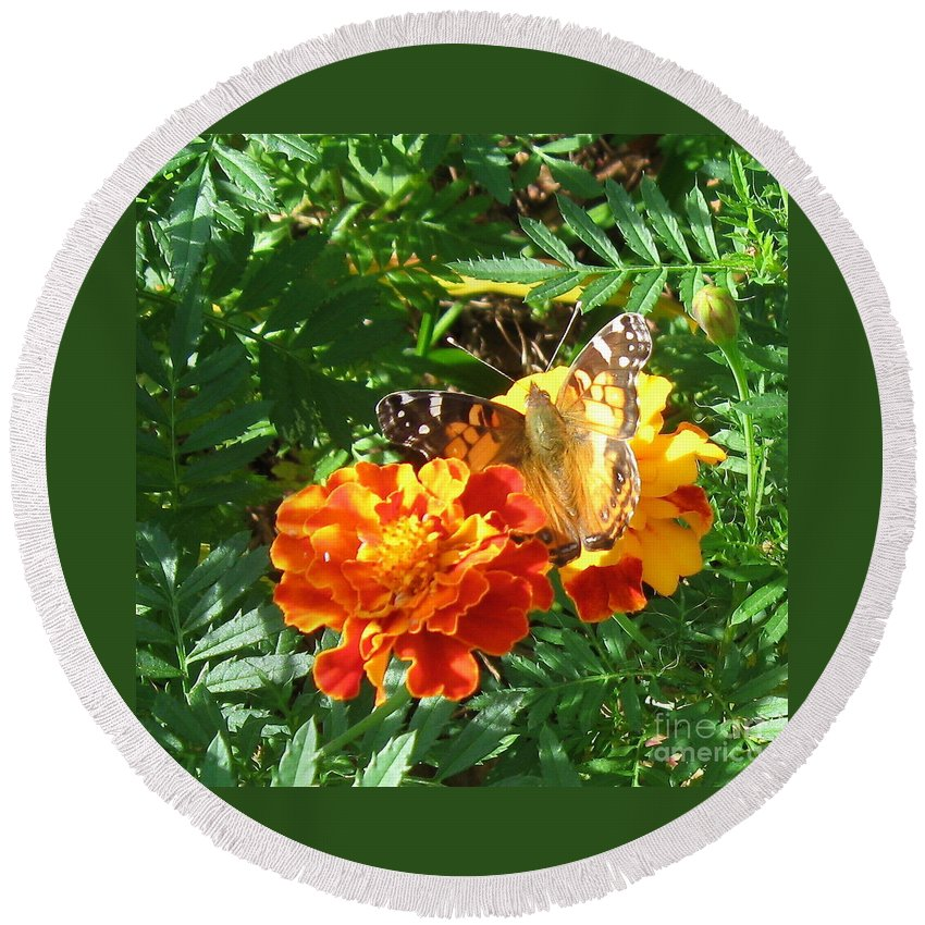 Painted Lady Butterfly Round Beach Towel featuring the photograph Painted Lady Butterfly by Nancy Patterson