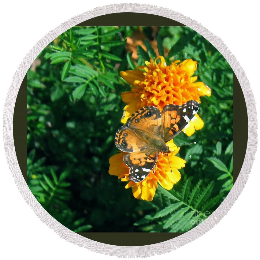 Painted Lady Butterfly Round Beach Towel featuring the photograph Painted Lady by Nancy Patterson