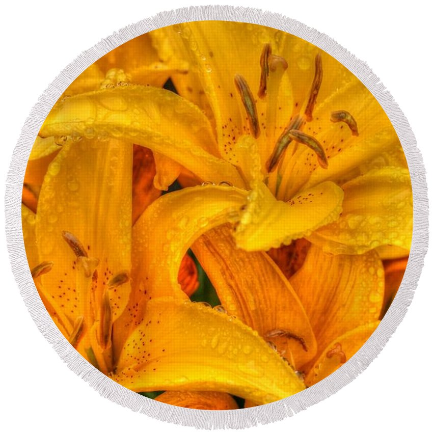 Yellow Round Beach Towel featuring the photograph Painted Lily by Tap On Photo