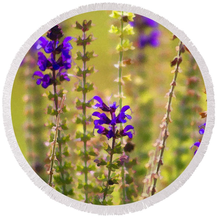 Lamiaceae Round Beach Towel featuring the photograph Painted Purple Sage Salvia by Kathy Clark