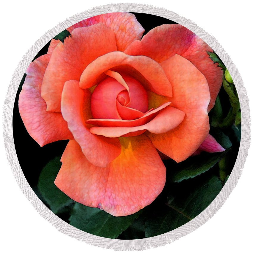 Flora Round Beach Towel featuring the photograph Painted Rose by Cindy Manero