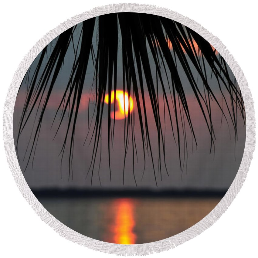 Fine Art Photography Round Beach Towel featuring the photograph Palm Set by David Lee Thompson