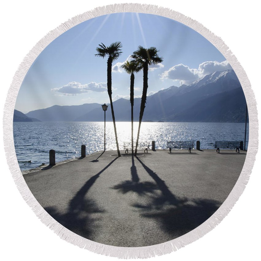 Palm Trees Round Beach Towel featuring the photograph Palm Trees With Shadows by Mats Silvan