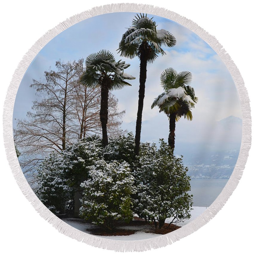 Palm Round Beach Towel featuring the photograph Palm Trees With Snow by Mats Silvan
