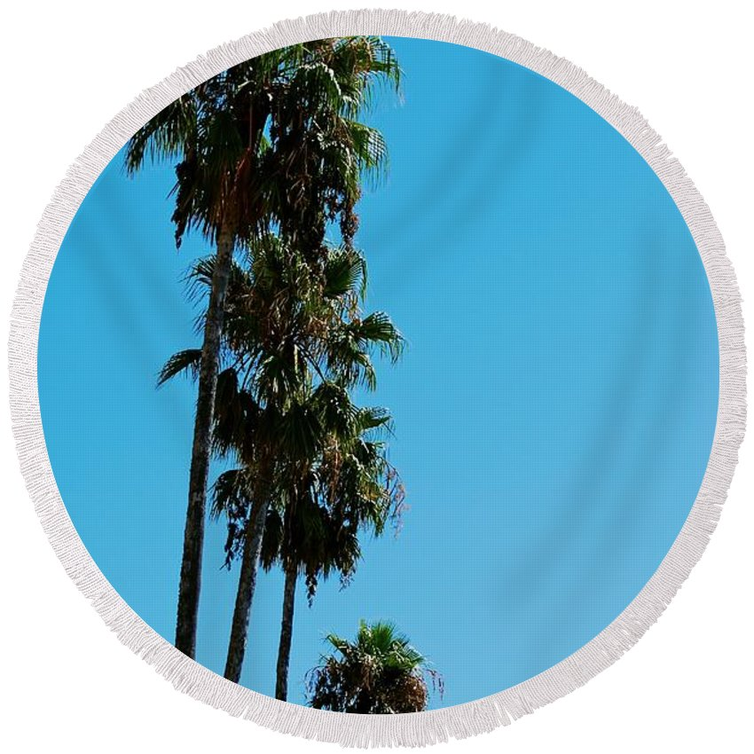 California Round Beach Towel featuring the photograph Palms Over Oak by Eric Tressler