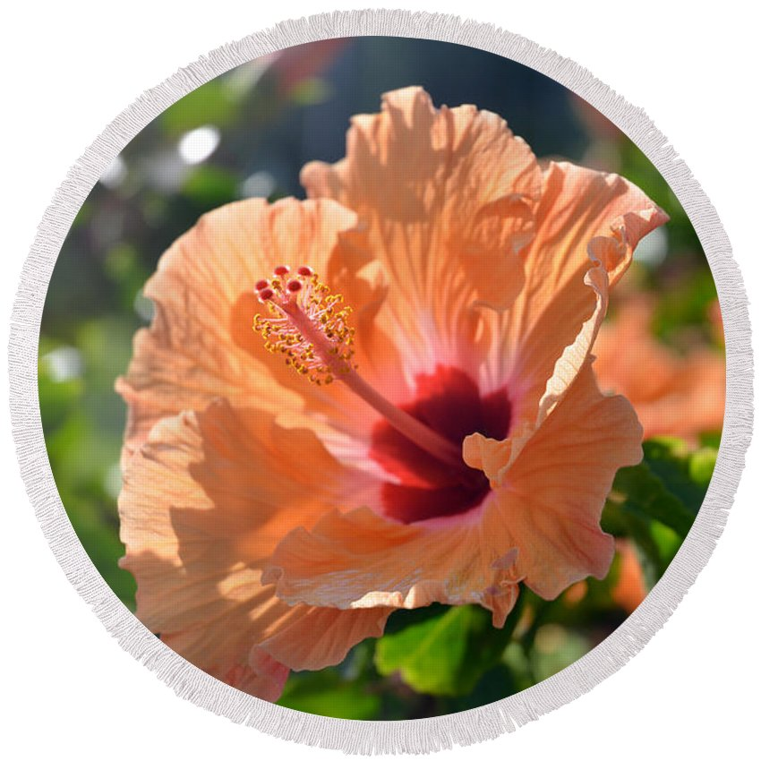 Hibiscus Round Beach Towel featuring the photograph Peach Hibiscus by Marie Hicks