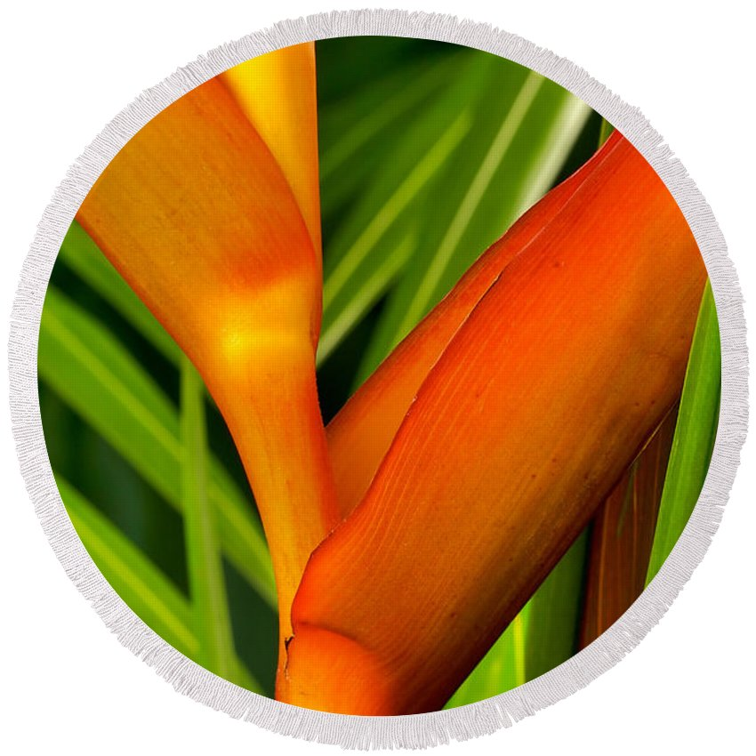 Flowers Round Beach Towel featuring the photograph Photograph Of A Parrot Flower Heliconia by Perla Copernik